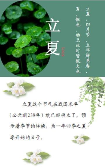 立夏节日公益宣传绿色小清新风格