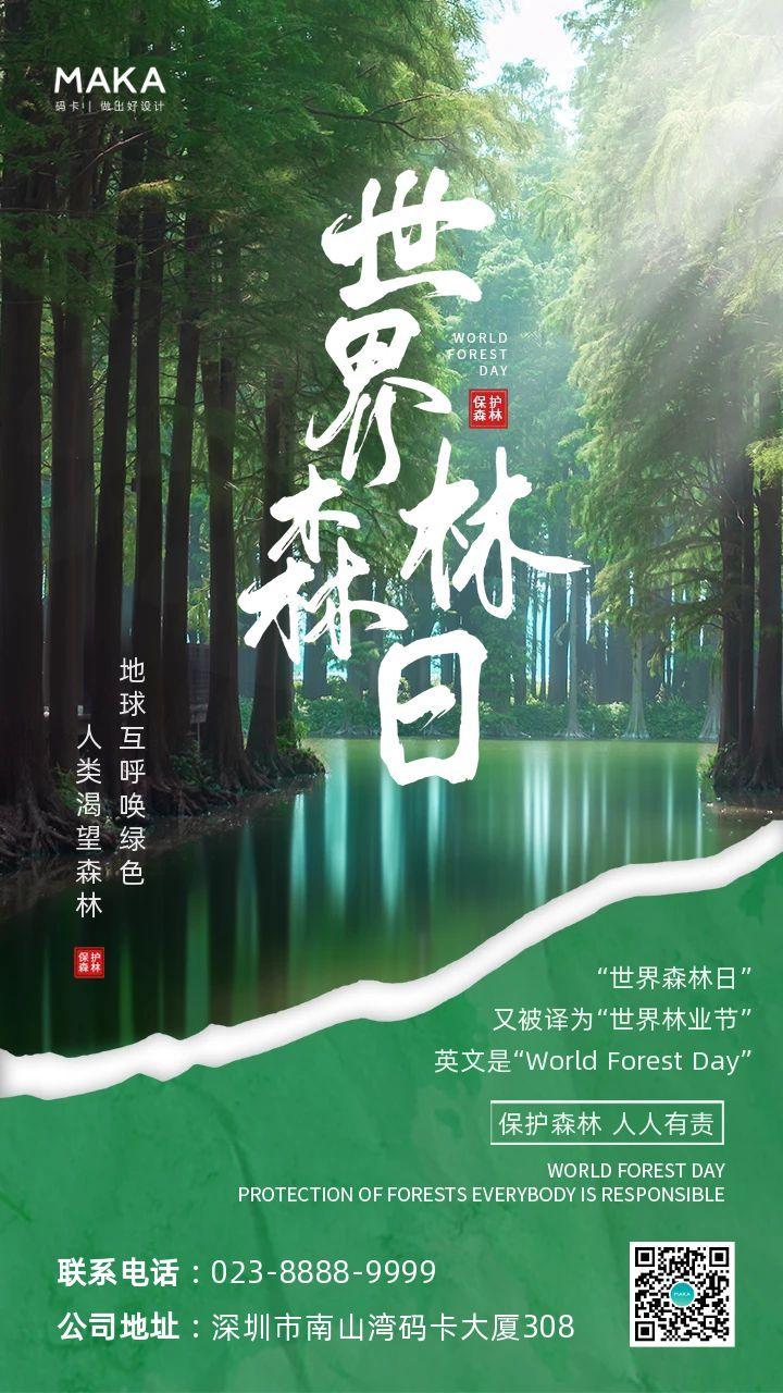 绿色简约实景风格世界森林日节日宣传手机海报