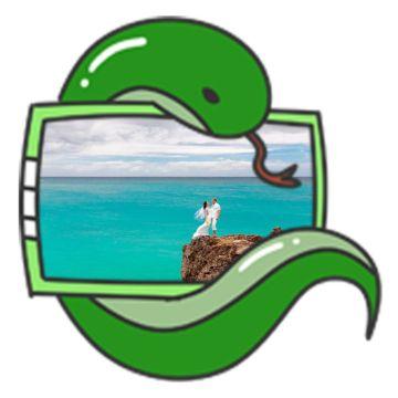 卡通动物猫小青蛇社交头像