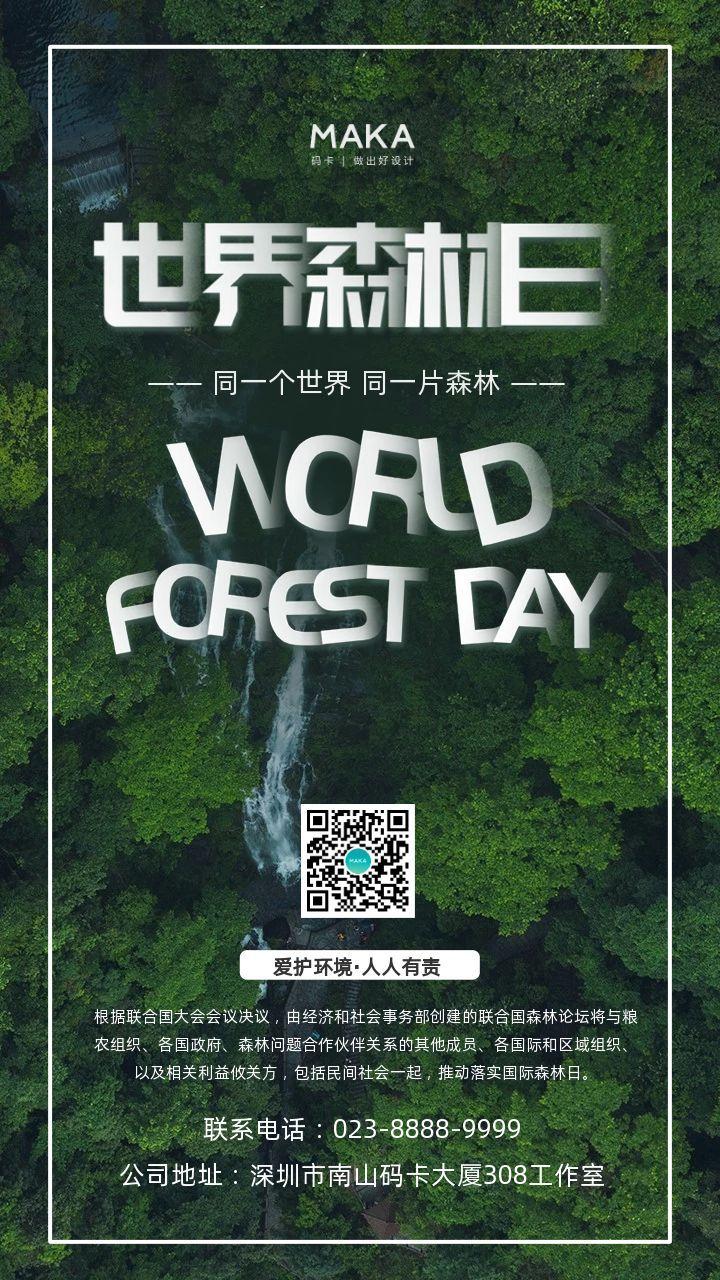绿色简约风格世界森林日公益宣传海报
