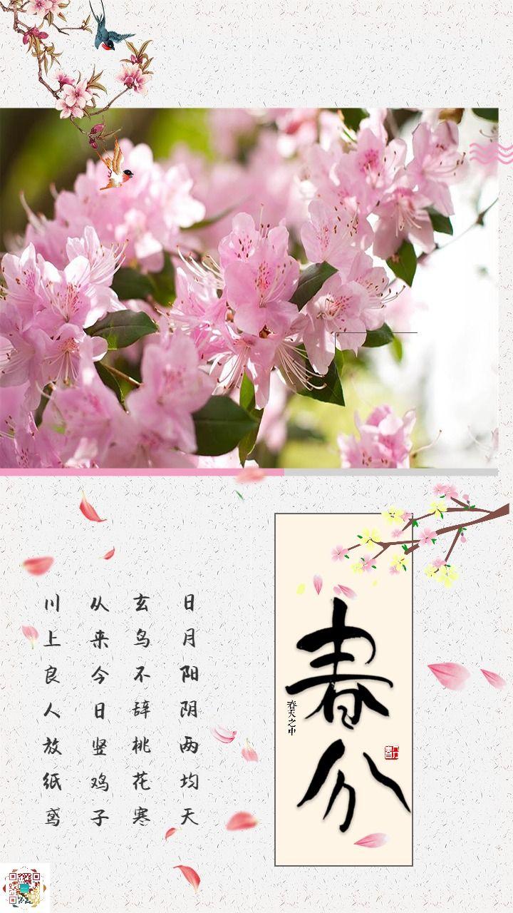 唯美清新粉色春分节气海报
