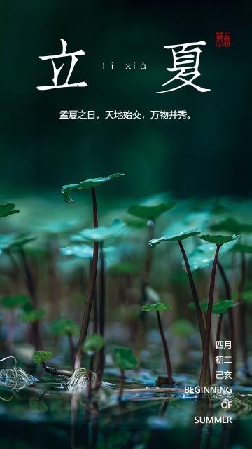 立夏节气绿色简约中式大气宣传海报