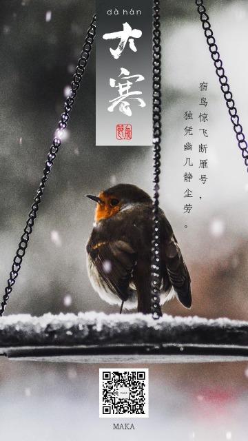 大寒节气白色简约寒雪未消宿鸟海报