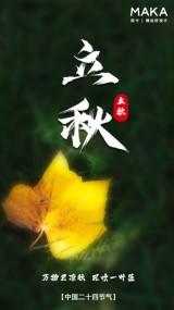黄色简约立秋实景节气祝福手机视频模板