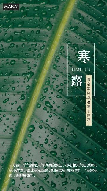 寒露节日海报