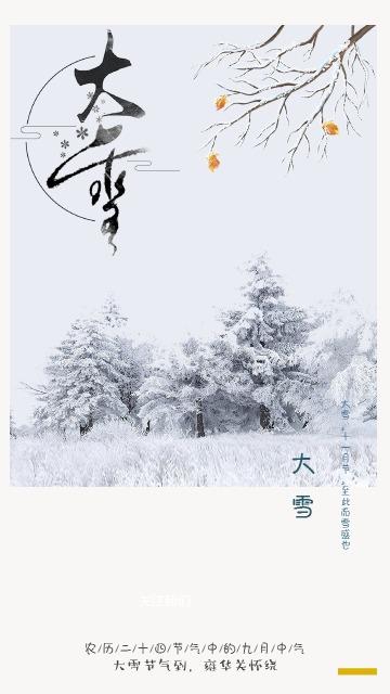热销节气大雪海报