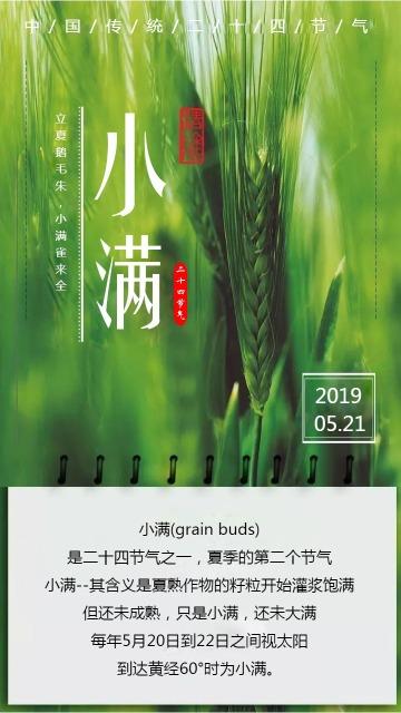 绿色清新文艺小满节气宣传海报