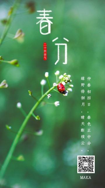春分节气绿色淡雅传统海报