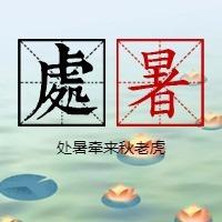 简约文艺传统二十四节气处暑微信公众号小图