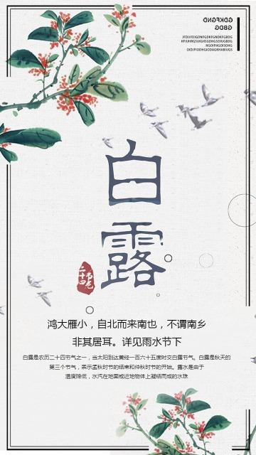 传统节气白露节气二十四节气清新文艺风格海报