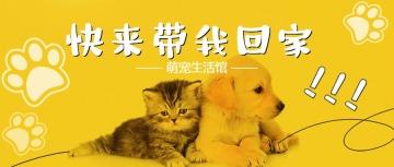 宠物店铺促销宣传卡通可爱公众号封面头条