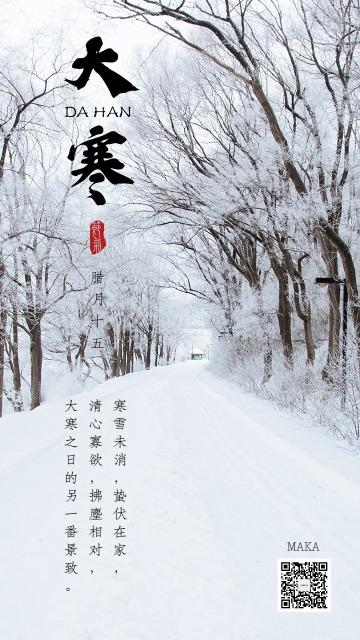 大寒节气天寒地冻白色简约大气海报