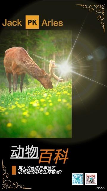 动物百科海报