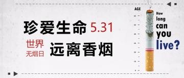 简约风5.31禁烟日公众号首图