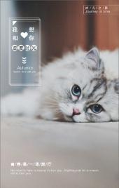 猫咪萌宠甜蜜温馨相册