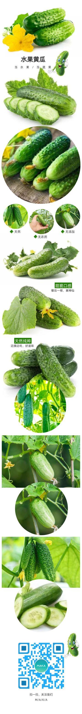 蔬菜水果黄瓜扁平简约设计风格电商微商产品详情页设计海报模板