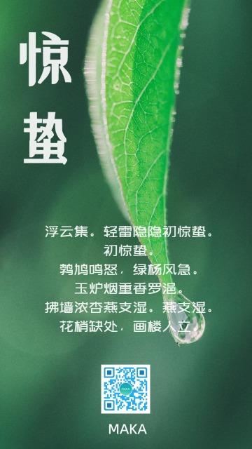 惊蛰二十四节气海报 宣传促销打折通用二维码朋友圈贺卡创意海报手机海报