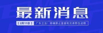 最新消息微博封面图热点新闻突发事件蓝色简约宣布通知报告权威发布