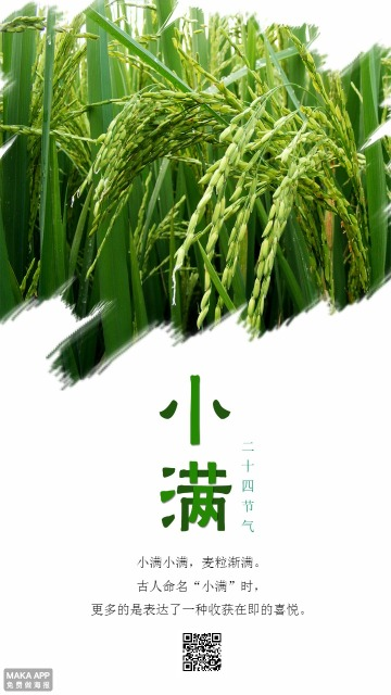 清新绿色24节气小满简约手机宣传海报