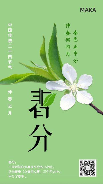 春分春天传统二十四节气踏春清新典雅古典宣传海报