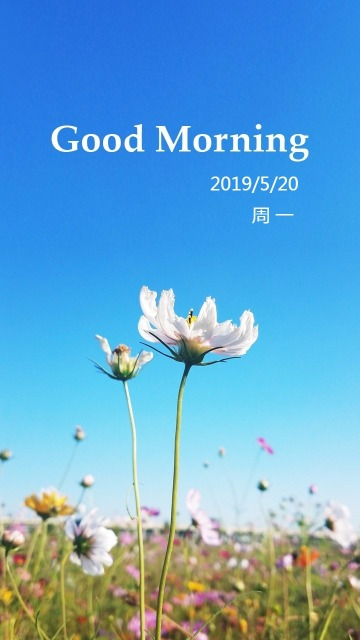 微信朋友圈励志清新早安海报