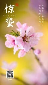 惊蛰2020粉色桃花大气简约企业节气海报