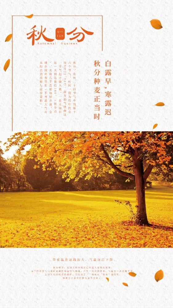 秋分,秋收,种麦-二十四节气