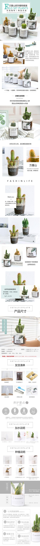 时尚文艺花盆花卉电商详情页