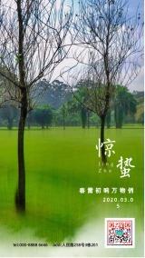 惊蛰/清新自然的中国传统24节气企业宣传日签海报