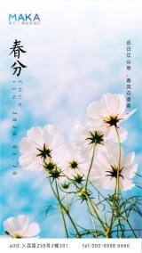 中国传统24节气/春分日签海报模板