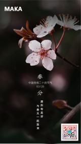 深色春分节气宣传海报