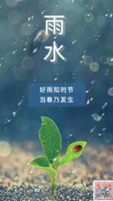 雨水绿色小清新文艺简约清明节二十四节气中国传统文化早安你好晚安日签企业宣传海报