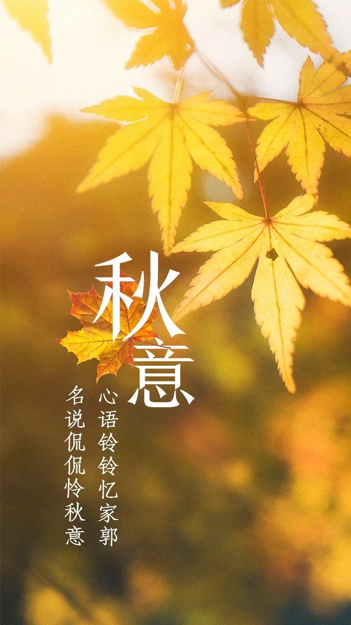 秋意秋季枫叶日签海报配图