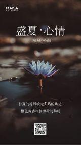 小清新文艺风企业/微商/个人盛夏心情日签宣传海报