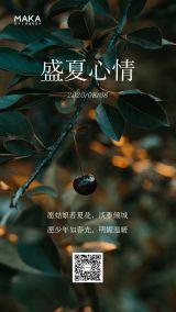 文艺清新企业/微商/个人盛夏心情日签宣传海报
