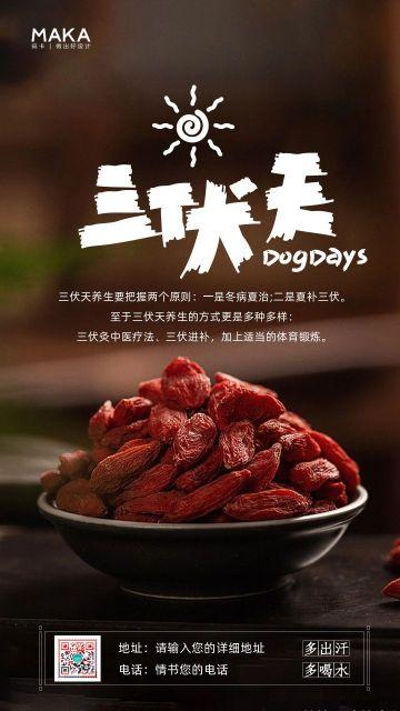 中国风医疗行业三伏天养生知识宣传通知海报