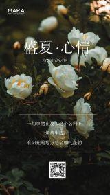 清新文艺风企业/微商/个人盛夏心情日签宣传海报